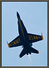 Charleston, SC - Blue Angels