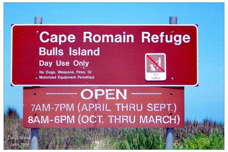 Bulls Island - June 7