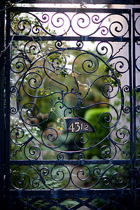 One of Charleston's finest gates