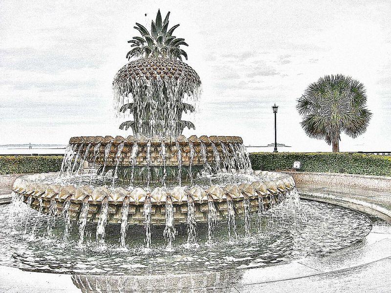 00aFavorite Pineapple Fountain [Sheri's Sketch - 'Top Color']