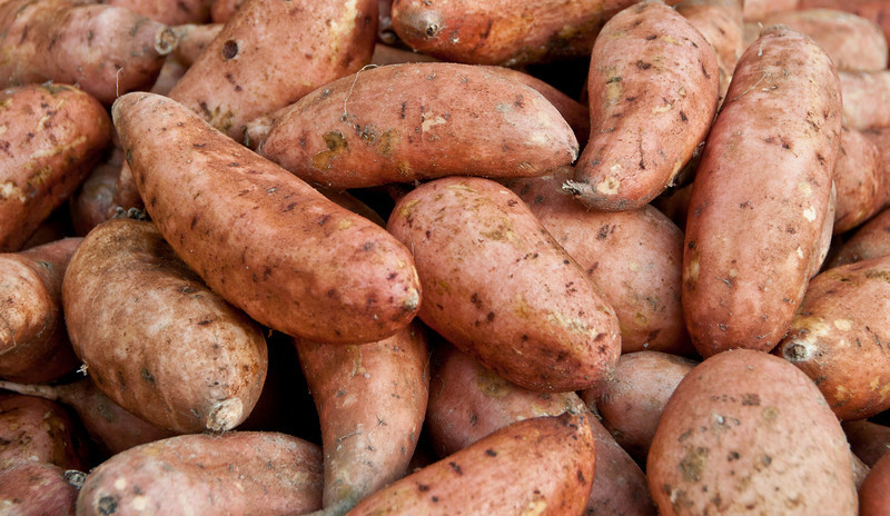 Farmer's Market at Marion Square - Sweet Potatoes