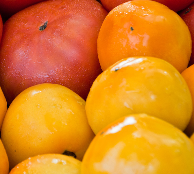 Farmer's Market at Marion Square - Tomatoes
