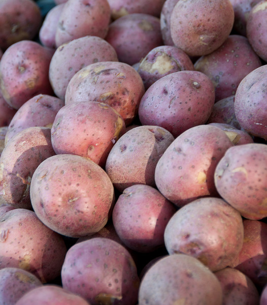 Farmer's Market at Marion Square - Red Potatoes