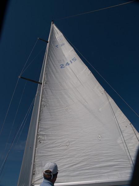 Sails, Charlottetown Harbour, Prince Edward Island