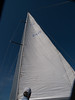 Sails, Charlottetown Harbour, Prince Edward Island