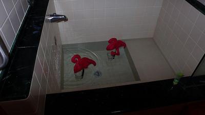 Flamingos enjoy the soaking tub at the Steamboat Inn.