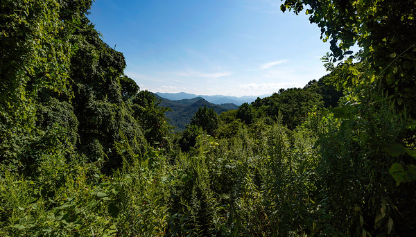 Cherokee-August 2016