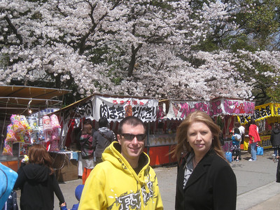 2012 Cherry Blossoms, Tsuramai Park, Nagoya Japan