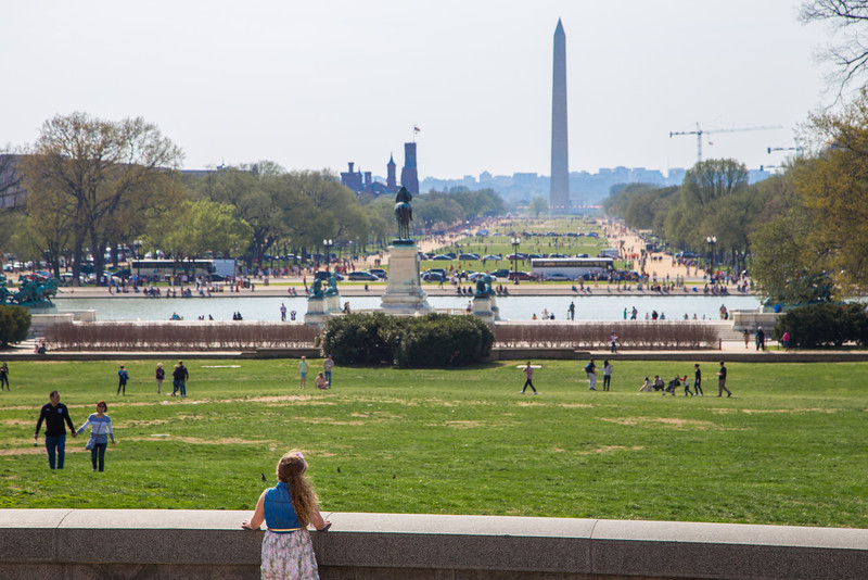Looking across the Mall to the Washington Monument.