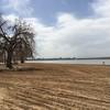 The beach - Cherry Creek Reservoir