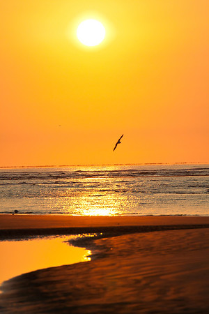 This  Cherry Grove Sunrise series was taken with a Canon 70-200mm f/4 lens with a  1.4 tele-extender.