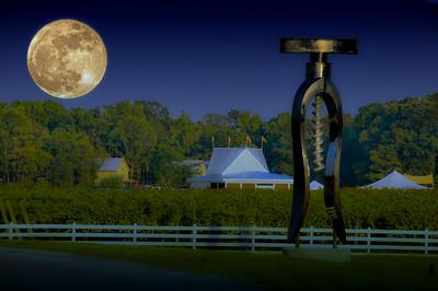 White Fences Winery, Irvington, VA