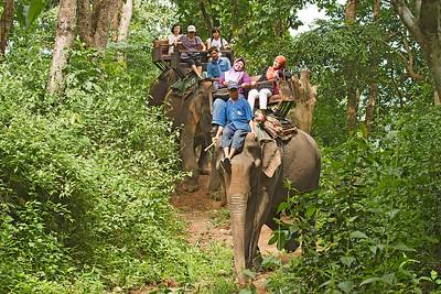 Mae Sa Elephant safari