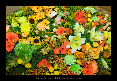Flowers @ Airport Plaza