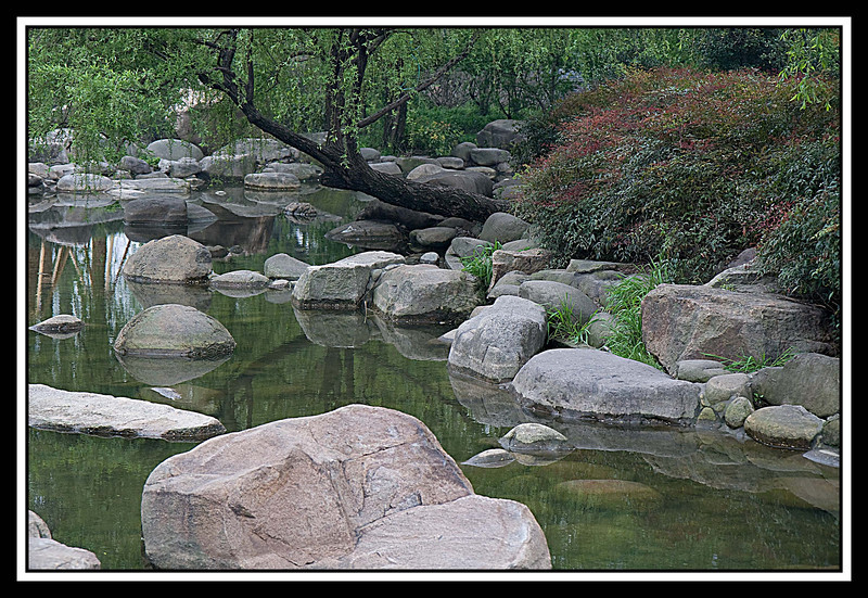 Even in the midst of Shanghai activity, you ca find some serene spots in parks such as this one ner the Yu gardens...