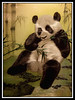 Panda silk embroidery...