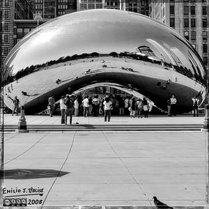 Chicago 2008 in B-n-W