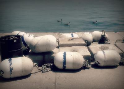Buoy Docks