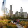 Lurie Garden at Millennium Park. The garden is co-designed by Seattle-based landscape architect Kathryn Gustafson
