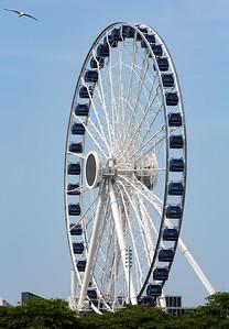 The Navy Pier Centennial Wheel: 196 feet tall.  Capacity of 240 people.