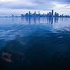 Chicago from Lake Michigan - seen before sunrise.