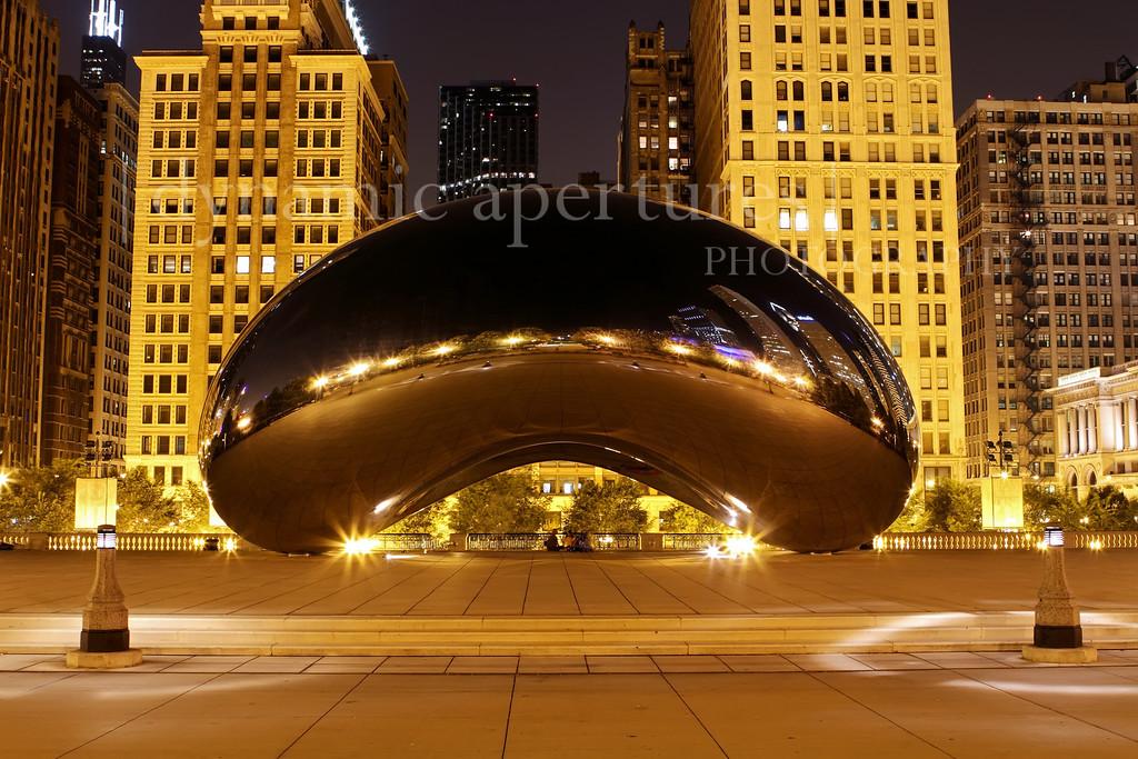 Millennium Park Cloud Gate - Chicago, IL