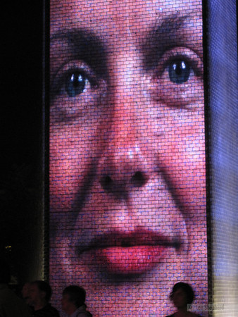 Millenium Park face