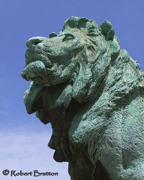 Lion Statue in Chicago