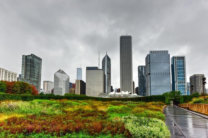 Chicago Skyline View from Lurie Garden