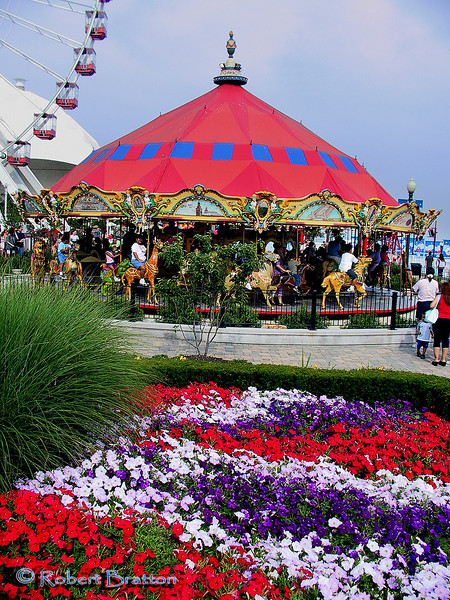 Merry-Go-Round at Navy Pier