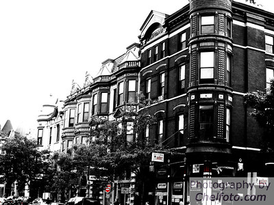 Vintage Fade  Chicago, IL