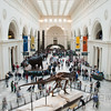 "<span id=""title"">Stanley Field Hall</span> This is the main hall of the Field museum, where you can see Sue, some elephants, and some totem poles. I was able to balance my camera on a ledge and use a slow shutter speed, which is why many of the people are blurry."