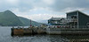 The Cat Cafe, Norris Point