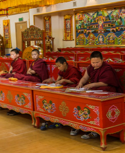 The young monks studying.