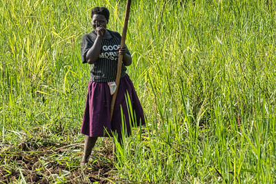 A woman working the fields