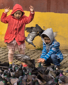 I love the reaction of this little girl at the actions of the pigeons