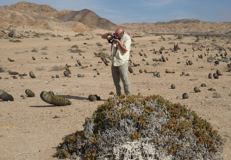 Bart shooting cacti in Pan de Azucar