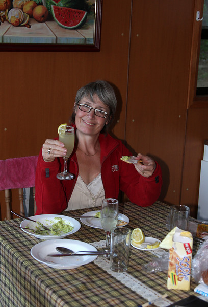 Enjoying a typical Chilean meal with pisco sour, and palta