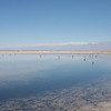 The Los Flamencos National Reserve is spread over 7 locations in the general neighborhood of San Pedro de Atacama. The easiest to reach from San Pedro is the Laguna Chaxa near Toconao.