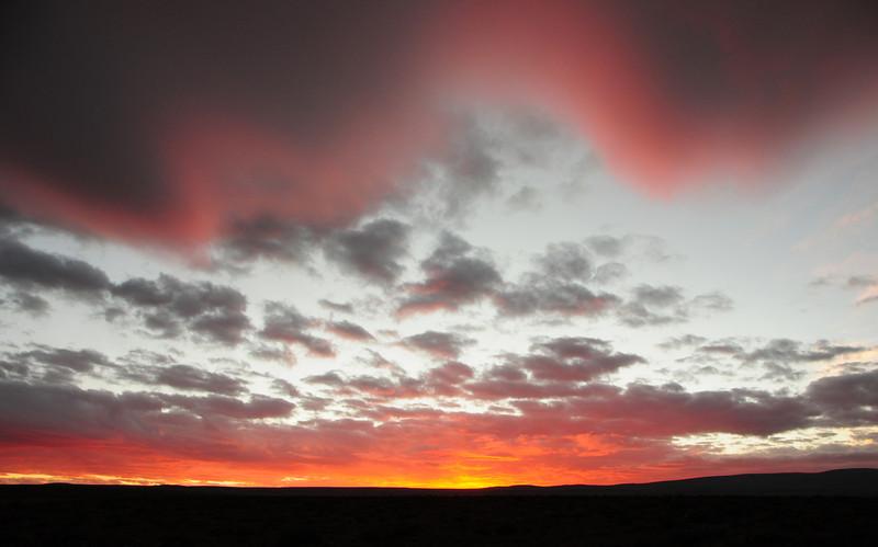Parque Nacional Salar de Huasco bush camp (GPS CHL025)