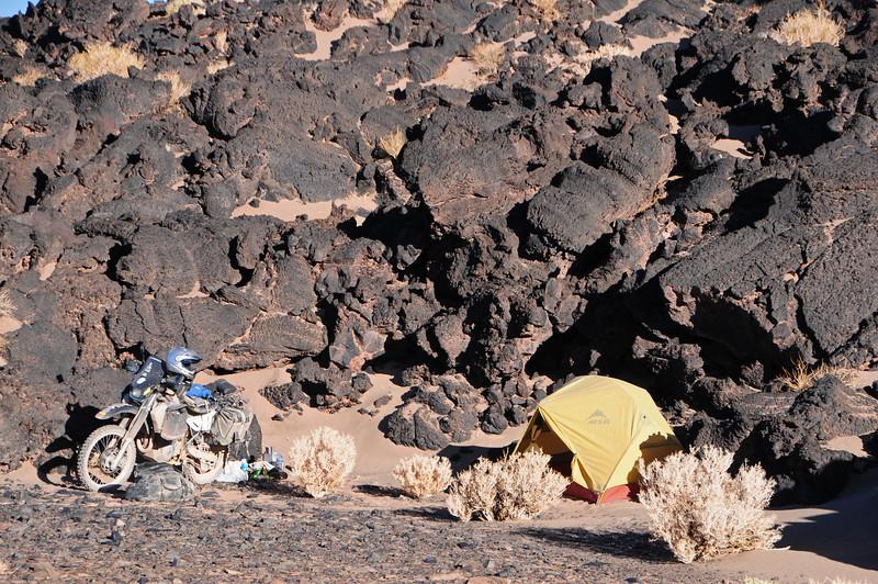 Bush camp near Antofagasta de la Sierra (GPS ARG033)