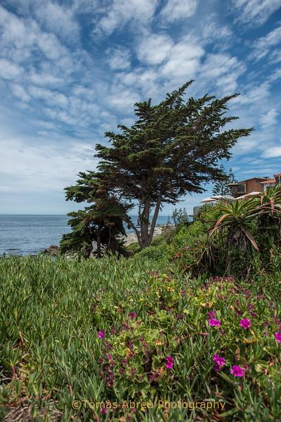 Pablo Neruda's house, Isla Negra