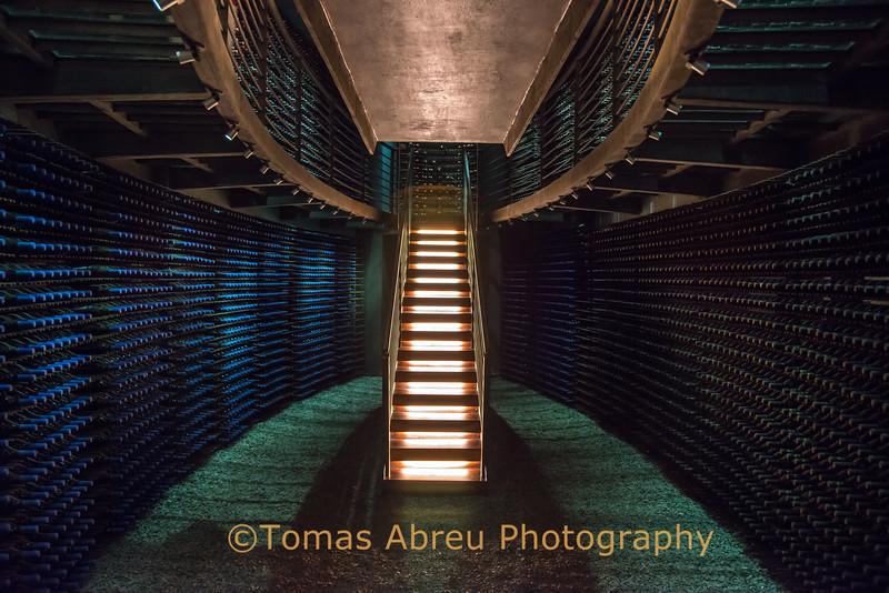 Owner's wine cellar, Lapostolle Vineyards