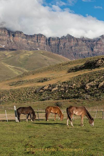 Hacienda 3R, Sierra Baguales, Patagonia