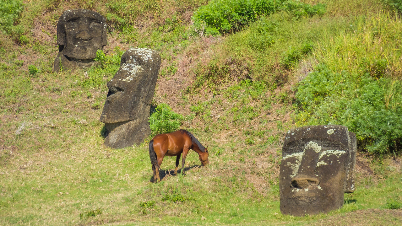 Horse Among the Moai Statues, Easter Island (Rapa Nui)