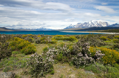 View over lake Sarmiento with the three towers in the background. Torres del Paine National Park, Patagonia, Chile