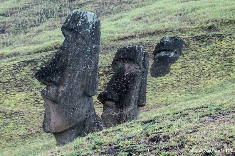 Easter Island-6197