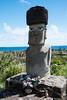 Easter Island-5855