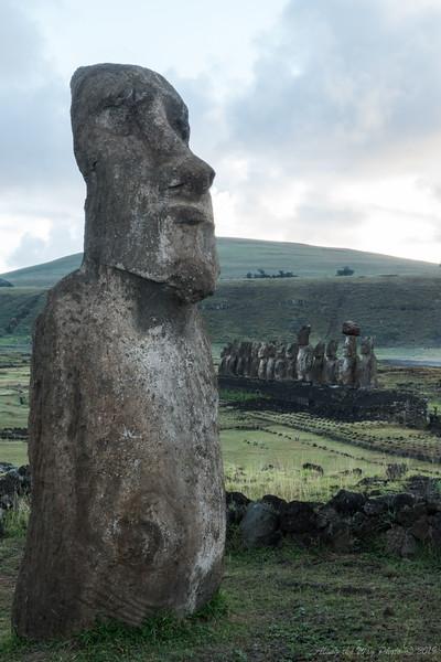 Easter Island-06142
