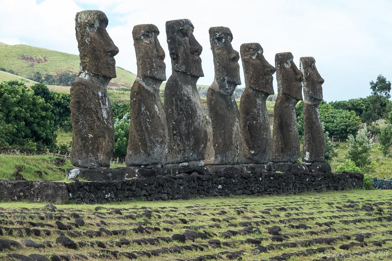 Easter Island-5953